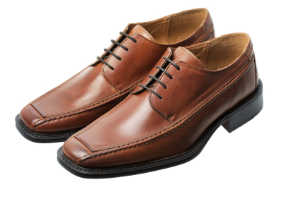 these are brown shoes